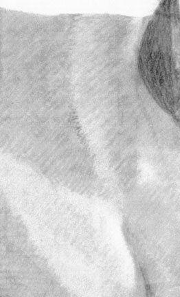 pencil portrait 0003 detail.jpg (27527 bytes)